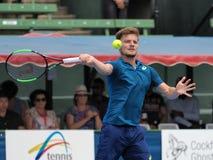Gracz w tenisa David Goffin narządzanie dla australianu open przy Kooyong klasykiem Fotografia Royalty Free