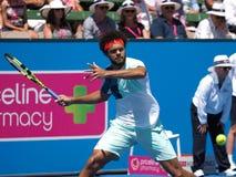 Gracz w tenisa Jo-Wilfried Tsonga narządzanie dla australianu open w Melbourne Zdjęcia Royalty Free