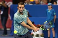 Gracz w tenisa Viktor Troicki Obrazy Royalty Free