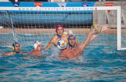 gracza waterpolo Obrazy Stock