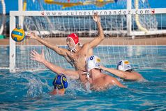 gracza waterpolo Obraz Royalty Free