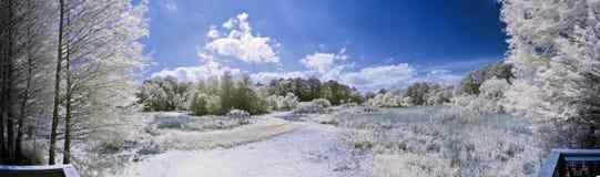 180 grad infraredpanorama Arkivfoton