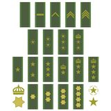 Gradbeteckning av den svenska armén stock illustrationer