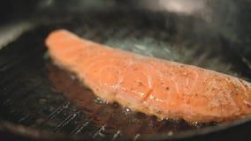 Grade da faixa dos salm?es do cozinheiro da farinha de peixes do restaurante filme