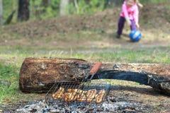 Grade de acampamento com a carne da galinha que cozinha sobre Fotografia de Stock