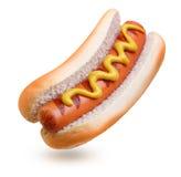 Grade do cachorro quente com mostarda fotografia de stock royalty free