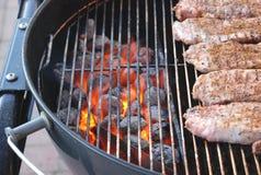 Grade do carvão vegetal Imagens de Stock Royalty Free