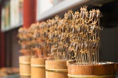 Grade e escorpião fritados na vara Fotos de Stock