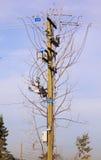 Grade elétrica complicada Foto de Stock Royalty Free