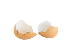 Egg shell. Grade A large egg quality Royalty Free Stock Photography
