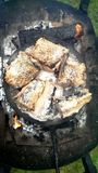 Grade salgada dos peixes Imagem de Stock
