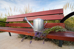 Graden bench and lavander Royalty Free Stock Photos