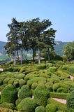 Graden (France). Garden in Provance  (France) on July 2013 Royalty Free Stock Photos