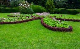 graden Jardín hermoso Texure verde Foto de archivo libre de regalías
