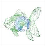 Gradi?ntillustratie van een vis Zwart-witte karpertekening royalty-vrije illustratie