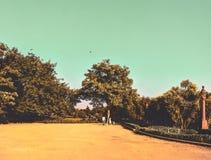 gradient photos stock