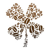 Coffee Bean Clover Stock Photography