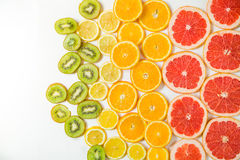 Gradient color citrus slices on white background. Gradient citrus slices - grapefruit, orange, lemon and kiwi slices, placed on white background from left to Royalty Free Stock Photography