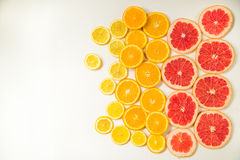 Gradient color citrus slices on white background. Gradient citrus slices - grapefruit, orange and lemon, placed on white background from left to right, from big stock image