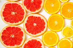 Gradient color citrus slices on white background. Gradient citrus slices - grapefruit, orange and lemon, placed on white background from left to right, from big royalty free stock photo