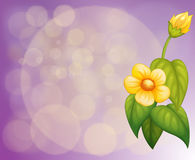 A gradient colored stationery with yellow flowers Stock Photos