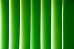Gradient pattern in green Stock Photography