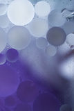 Gradient Purple Oil drops in the water -abstract background Stock Images