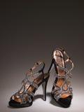 Gradiente blingbling atractivo del gris de los zapatos de las mujeres foto de archivo libre de regalías