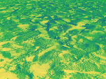Gradiented green-yellow beach sand background Royalty Free Stock Photo
