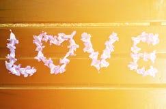gradientowy miłości siatki wektoru słowo zdjęcie stock
