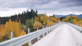 360 grados Pan Bridge de St Elias National Park de Wrangell del delta del río