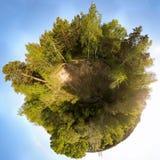 360 grados panorámicos en un bosque verde con un cielo azul imagen de archivo