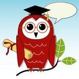 Graduação sábia da coruja Fotografia de Stock