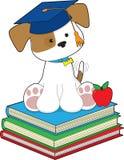 Graduado lindo del perrito Imágenes de archivo libres de regalías