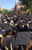 Graduados da escola de negócios Fotografia de Stock
