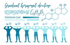 Gradual hormone decline. Testosterone Hormone Level. Beautiful medical vector illustration with molecular formula in blue colours. Scientific, educational and Royalty Free Stock Photography