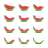 Gradually eating of watermelon slice Royalty Free Stock Photo