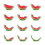 Gradualmente comer da fatia da melancia ilustração royalty free