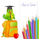 Graduate Bird Stock Image