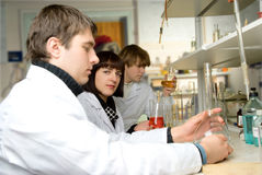 Graduate - chemists in the laboratory Royalty Free Stock Photo