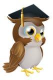 Graduate Owl Royalty Free Stock Image