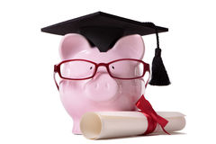 Graduate Piggy Bank student graduation college diploma isolated Royalty Free Stock Photo
