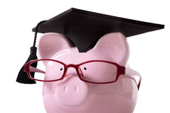 Graduate Piggy Bank student college graduation, close up, white background Royalty Free Stock Photos