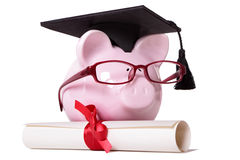 Graduate Piggy Bank student college graduation diploma Royalty Free Stock Photography
