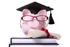 College graduate Piggy Bank student graduation diploma front view Royalty Free Stock Photography