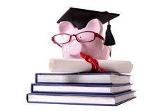 Graduate Piggy Bank student collage graduation diploma Royalty Free Stock Photography