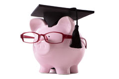 Graduate Piggy Bank isolated student graduation, education saving concept Stock Photos