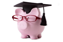 College graduate Piggy Bank student graduation Royalty Free Stock Image