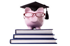 Graduate Piggy Bank student graduation diploma isolated Stock Image