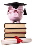 Graduate Piggy Bank student graduation success college diploma vertical Stock Photo